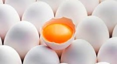Пищевая ценность куриных яиц