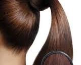Строение и жизненный цикл волос