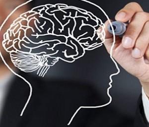 Мини-мозг поможет лечить болезнь Паркинсона