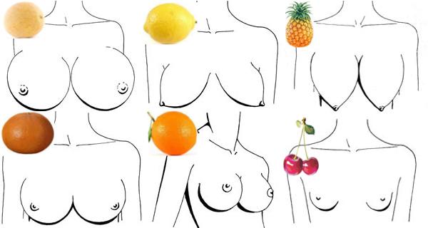 Формы женской груди