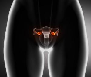 Кальций в продуктах снижает риска развития рака у женщин