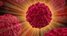 Найден способ разрушить устойчивые раковые клетки