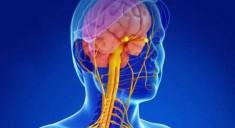 Антидепрессанты помогут победить рассеянной склероз